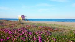 Aphrodite Village Naturiste - Poste de secours sur la plage © Locations-leucate.com