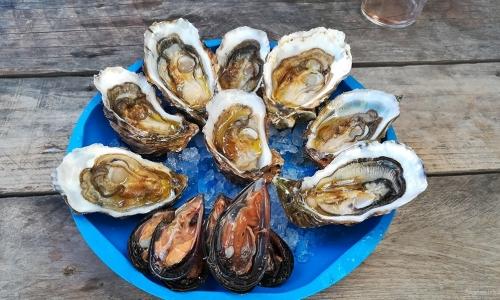 Dégustation huîtres et moules de Leucate - © Locations-Leucate.com